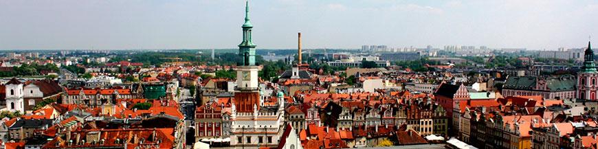 Продвижение сайта в Польше