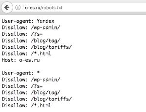 Пример файла robots.txt