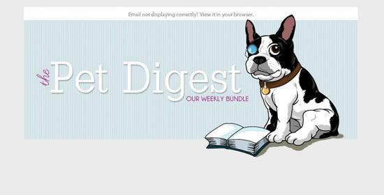 Пример заголовка новостного письма The Pet Digest для блога The Pet Anthology